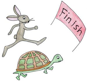 Hare and Tortoise Competitors